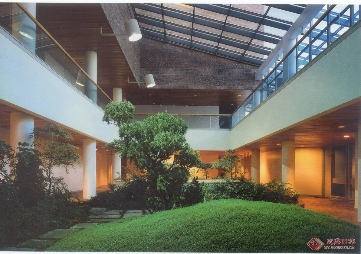 室内景观绿化(4张)