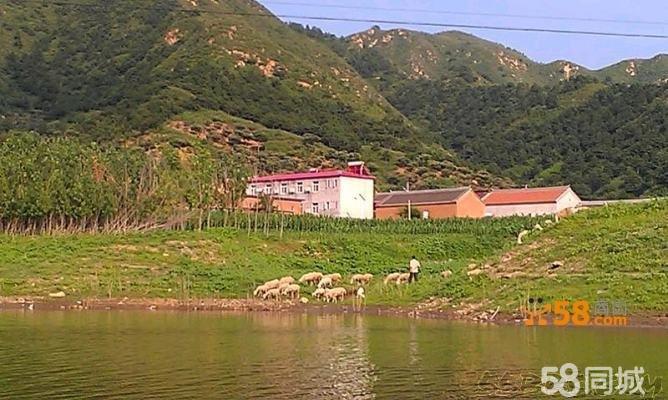 沙厂水库(金鼎湖风景区)